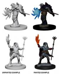 D&D Miniatures: Elf male Wizard