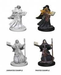 D&D Miniatures: Human female Wizard